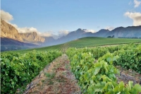 Winelands, RSA